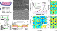 Extra-Ordinary Effects in Quasi-Periodic Gold Nano-Cavities: Enhanced Transmission and Polarization Control of Cavity Modes